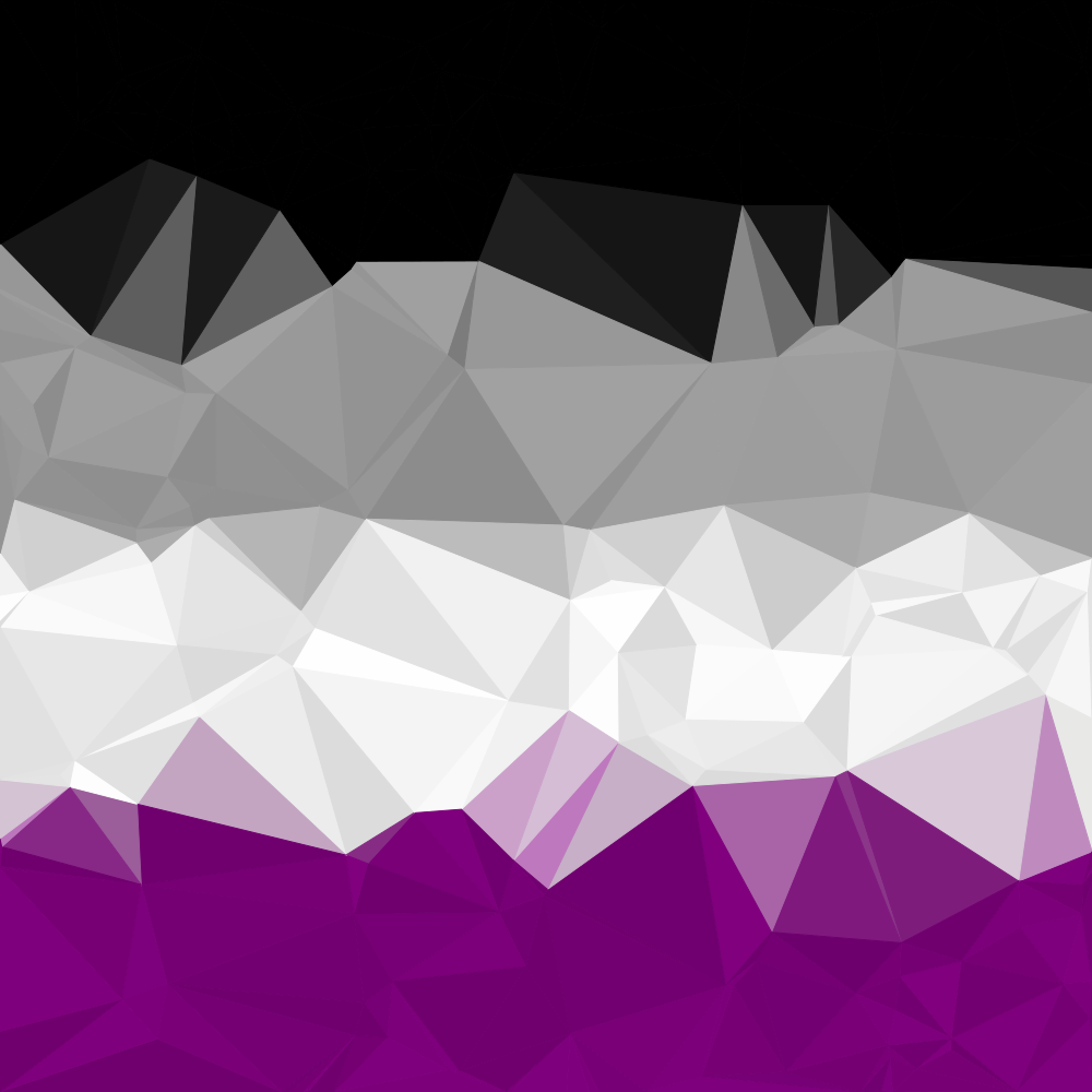 Abstract Asexual Pride Flag